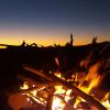 Alamito Creekside Camping