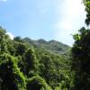 El Bohio(eco-abode)