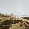 Working Urban Farm in Austin