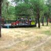 Max Gross: campsite 2