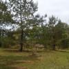 Crook Wilderness Retreat