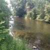 Wandwood Stream