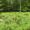 Hilltop Camping