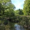 Montsweag Brook Acreage