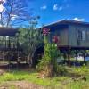 House of Honu (Turtles)