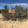 Little Wolf Camp - Terlingua