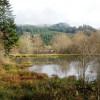 Beaver Pond Campsite