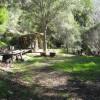 Vehicle Camping on Organic Farm