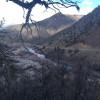 Bear Meadow