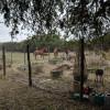 Plateau Oaks Wimberley Camping