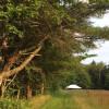 Camping on an Educational Farm