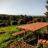 Coastal Farm Retreat