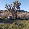 Desert Moon Ranch