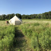 Glamping on The Farm @heirloomista