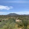 Saguaro Green Desert Experience
