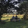 Sasquatch Camp Luckenbach/FBG