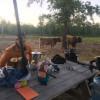 Sarah Bella Farm, Ranch and Camping