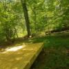 Riparian Buffer Wooded Creek Oasis