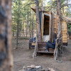 Rustic Elegant Wooded Tree Cabin