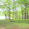 Spring Lake Ranch RV #2 -50amp