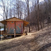 Crystal Palace Forest Bunkhouse