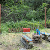 Redwood Paradise Camping