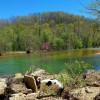 Big Creek Vulcan Campsite