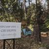 Yosemite's FERRETTI FARM