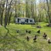 Hobby Farm Near Lake Erie Shore