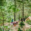 Mill Pond Camp