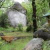 Bodie Ridge Forest Retreat