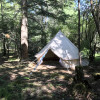 Friday Harbor Forest Glamping