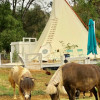 22' Tipi at Wishing Well mini Ranch