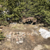 High Altitude Camping Getaway