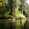 Salmon Creek River Retreat
