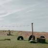 Ardounie Farm