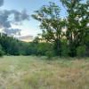 Ranch + wildlife + pool (self camp)