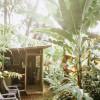 River Rainforest Tiny Cabin