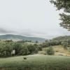 Iconic Appalachian Mountains