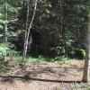 Aspen Grove Campsite