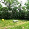 RhizeUp Homestead Campsite