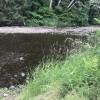 OregonCoastCampers River Retreat