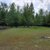 Pine Needle Farm Cashmeres