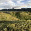 Primrose Meadows