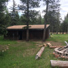 Beaver Brook forest
