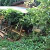 The tiny House at Casa Nola