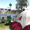 Shadow Hills Tent Camping