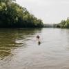 """Hidden River """"Riverside Campsites"""""""