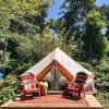 Camp Three Tree Point