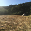 3 Acres on the Eel River